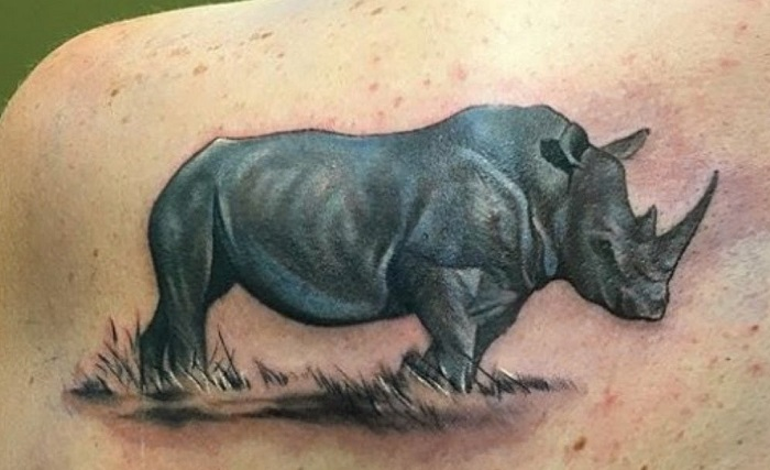 Rhino Tattoo - Meanings, Symbolism, Designs and Ideas