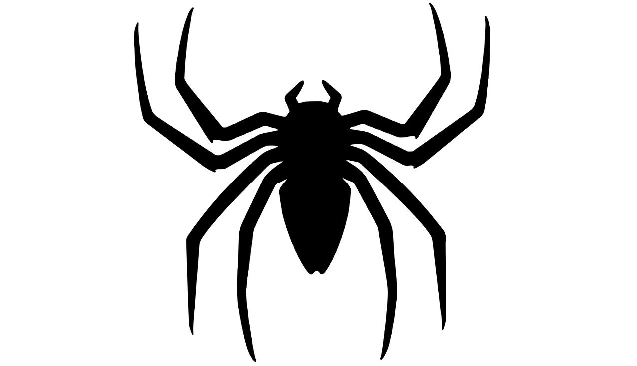 наш картинки с пауками для тату конуса, предназначенного для