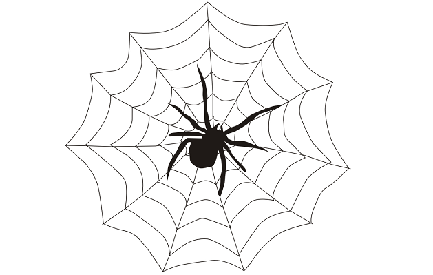 Spider Tattoo - Meaning, Symbolism, Designs and Ideas